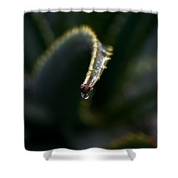 Shower Curtain featuring the photograph Hold On by Nadalyn Larsen