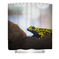 Hold Still Please Shower Curtain