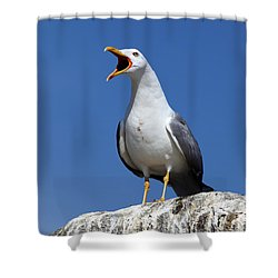 Holding Forth Shower Curtain by James Brunker