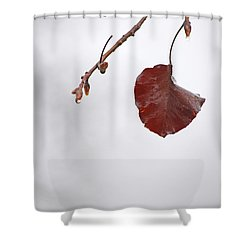 Holding On Shower Curtain by Karol Livote