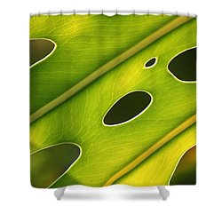 Holey Light Shower Curtain by Amy Gallagher