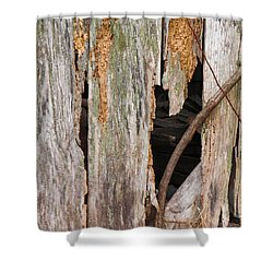 Shower Curtain featuring the photograph Holey Smokehouse by Nick Kirby