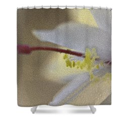 Holiday Cactus Shower Curtain