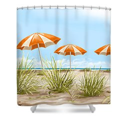 Holiday Shower Curtain by Veronica Minozzi