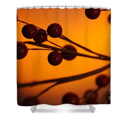 Shower Curtain featuring the photograph Holiday Warmth 2 by Linda Shafer