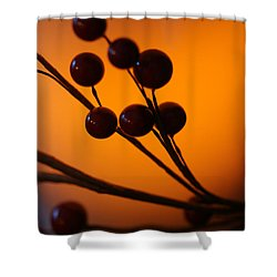 Shower Curtain featuring the photograph Holiday Warmth 3 by Linda Shafer