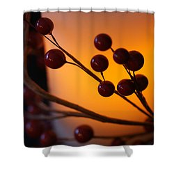 Shower Curtain featuring the photograph Holiday Warmth By Candlelight 1 by Linda Shafer