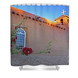 Hollyhocks On Adobe Shower Curtain