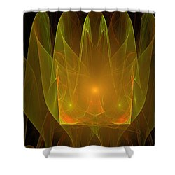 Holy Ghost Fire Shower Curtain by Bruce Nutting