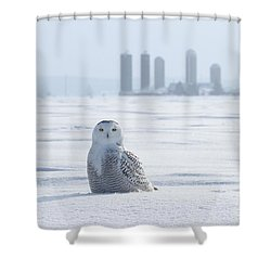 Home Away From Home Shower Curtain