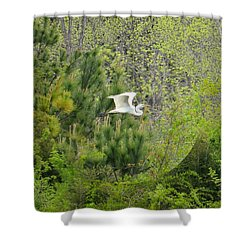 Home Of The Free Shower Curtain by Maria Urso