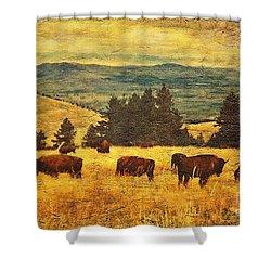 Home On The Range Shower Curtain by Lianne Schneider
