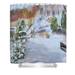 Home Scene South Shower Curtain