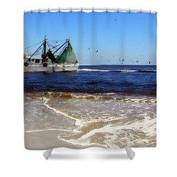 Homeward Bound Shower Curtain by Karen Wiles