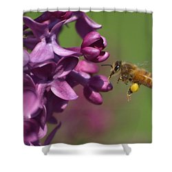 Honey Bee And Lilac Shower Curtain by James Peterson