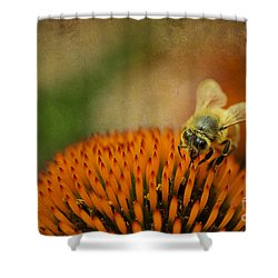 Honey Bee On Flower Shower Curtain by Dan Friend