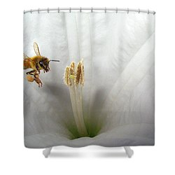 Honey Bee Up Close And Personal Shower Curtain by Joyce Dickens
