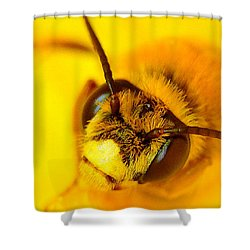 Honey Bee Yellow Shower Curtain by Chris Fraser