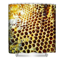 Honey Honey Shower Curtain