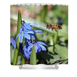 Honeybee In Flight Shower Curtain by Lucinda VanVleck