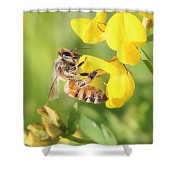 honeybee on Birdsfool Trefoil Shower Curtain by Lucinda VanVleck