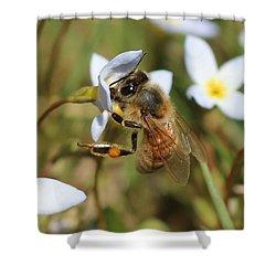 Honeybee On Bluet Shower Curtain