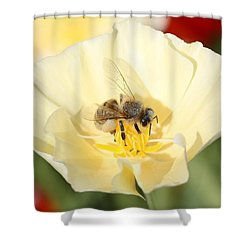Honeybee On Cream Poppy Shower Curtain by Lucinda VanVleck