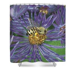 Honeybee On Purple Aster Shower Curtain by Lucinda V VanVleck