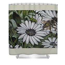 Shower Curtain featuring the painting Honeybee Taking The Time To Stop And Enjoy The Daisies by Kimberlee Baxter