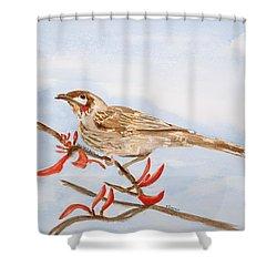 Honeyeater  Shower Curtain