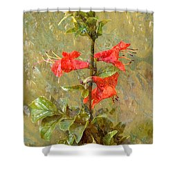 Shower Curtain featuring the photograph Honeysuckle- Classical by Darla Wood