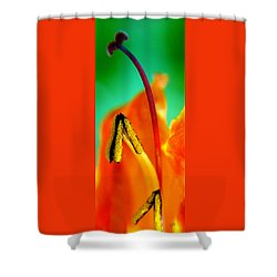 Honeysuckle Spectacular Shower Curtain by Ben and Raisa Gertsberg