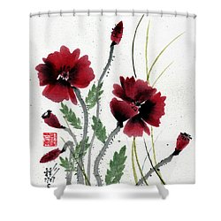 Honor Shower Curtain by Bill Searle