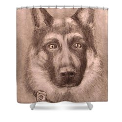 Honor Shower Curtain by Jack Skinner
