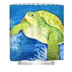 Honu Shower Curtain