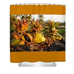 Hookupu At Sunset Shower Curtain