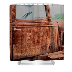 Hop In Shower Curtain by Lynn Sprowl