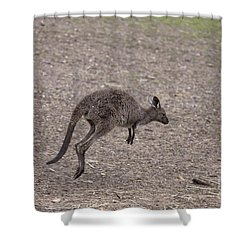 Hop Shower Curtain by Mike  Dawson