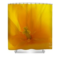 Hope And Glory Shower Curtain by Lingfai Leung