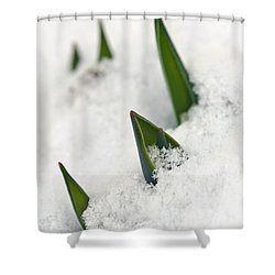 Hope Shower Curtain by Dee Cresswell