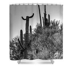 Horn Saguaro Cactus Shower Curtain