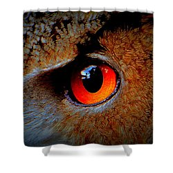 Horned Owl Eye Shower Curtain
