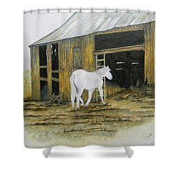 Horse And Barn Shower Curtain by Bertie Edwards