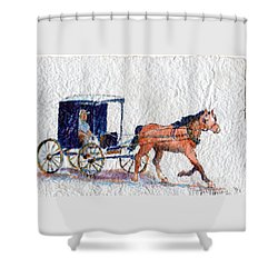 Horse And Buggy Shower Curtain