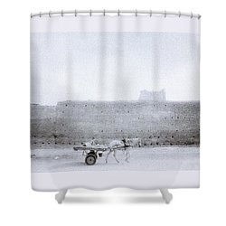 Horse And Cart Shower Curtain by Shaun Higson