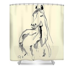 Horse - Arab Shower Curtain