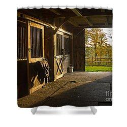 Horse Barn Sunset Shower Curtain
