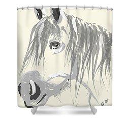 Horse- Big Jack Shower Curtain by Go Van Kampen