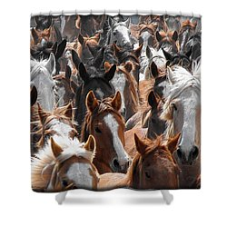 Horse Faces Shower Curtain