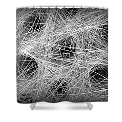 Horse Hair Shower Curtain by Clare Bevan